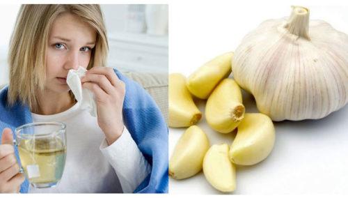 tỏi trị cúm