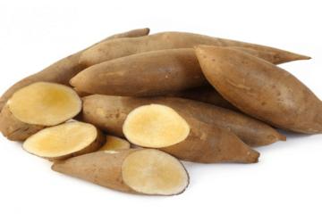 Sâm khoai và những lợi ích sức khỏe không phải ai cũng biết