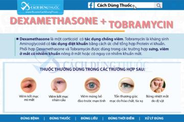 Hướng dẫn cách dùng thuốc kết hợp Dexamethasone và Tobramycin