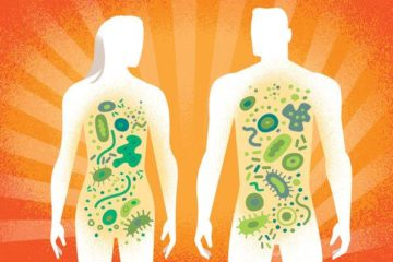 Vai trò của hệ vi sinh vật trong ung thư, viêm ruột, béo phì và nhiễm trùng