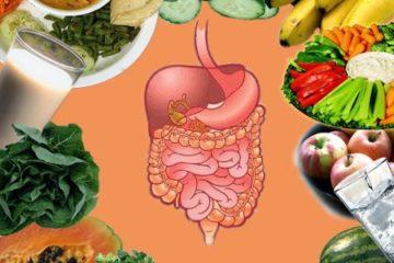 Hãy ghi nhớ 5 điều sau để luôn khỏe mạnh cùng hệ vi sinh vật đường ruột của bạn