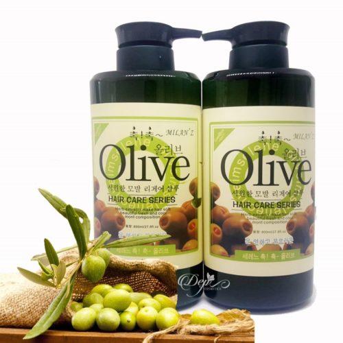 5. Dầu gội cặp Olive 1