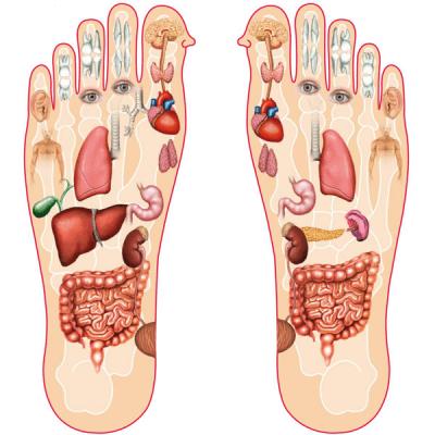 Ý nghĩa của việc Massge chân