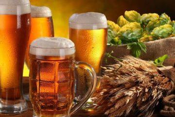 Tác dụng của men bia sống và lịch sử ra đời vại bia
