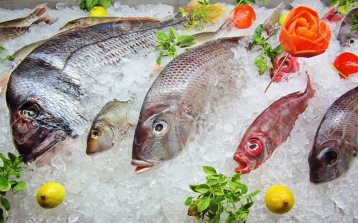 Sự thật về hải sản - Benh.vn