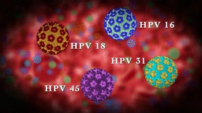 Các chủng virus HPV phổ biến