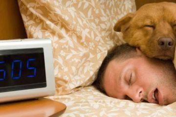 Ngủ bù có thể không có ích gì cho bạn