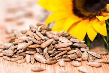 8 loại hạt quen thuộc cực tốt cho sức khỏe