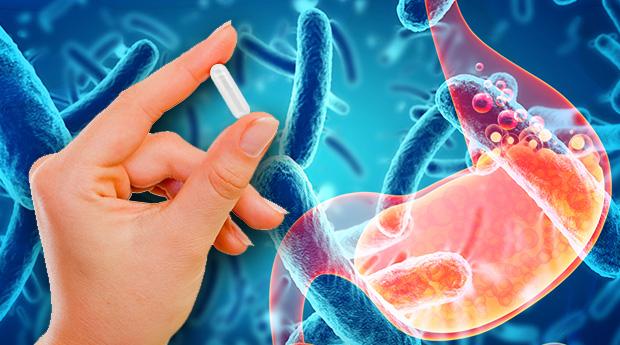 Tiêu chuẩn của vi sinh vật được chọn làm men vi sinh