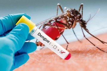 Sốt xuất huyết Dengue: Nguyên nhân, dấu hiệu, cách điều trị và phòng ngừa