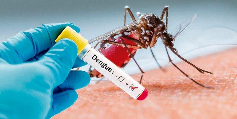 Xét nghiệm chẩn đoán sốt xuất huyết Dengue