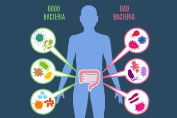 Men vi sinh và những lợi ích bất ngờ cho sức khoẻ