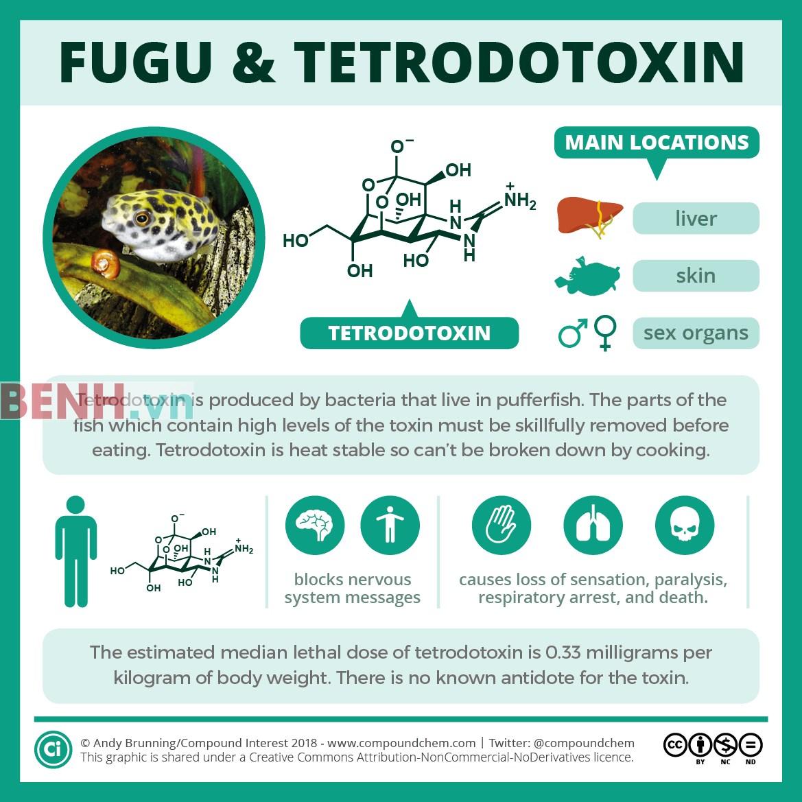 doc-to-cua-mat-quy-Tetrodotoxin