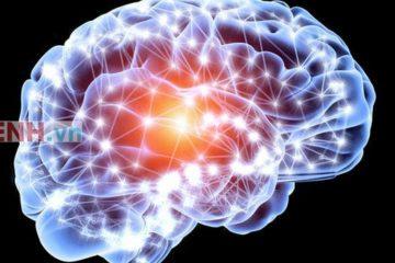 Chuyên gia lý giải về tác dụng của thuốc bổ não cho con trong kỳ thi